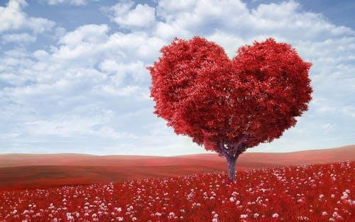 Berikut 10 Kata Cinta Paling Romantis Yang Bisa Bikin Dia Klepek-klepek